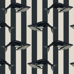 whale_low_72dpi_1